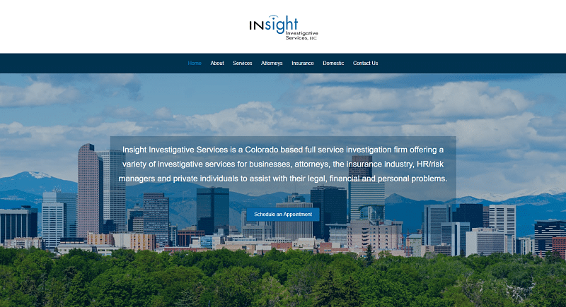 screenshot of Insight Investigative Services website