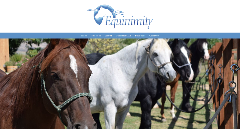 screenshot of equinimity.com